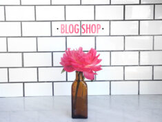 slider_blogshop