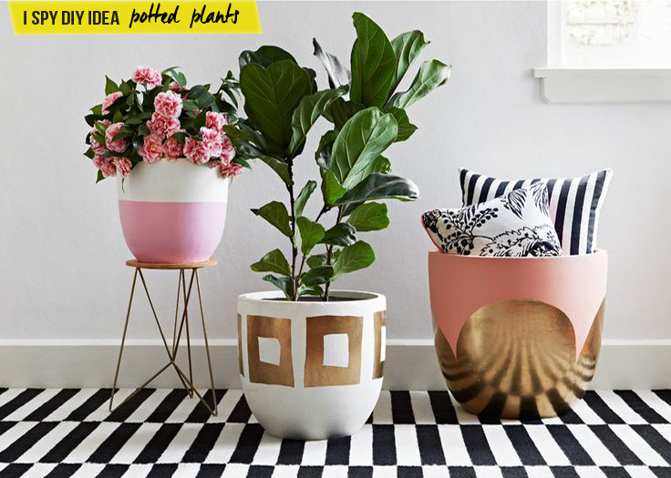 INSPIRATION | Potted Plants