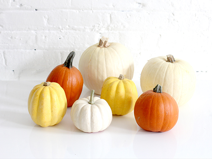 ispydiy_pumpkins7