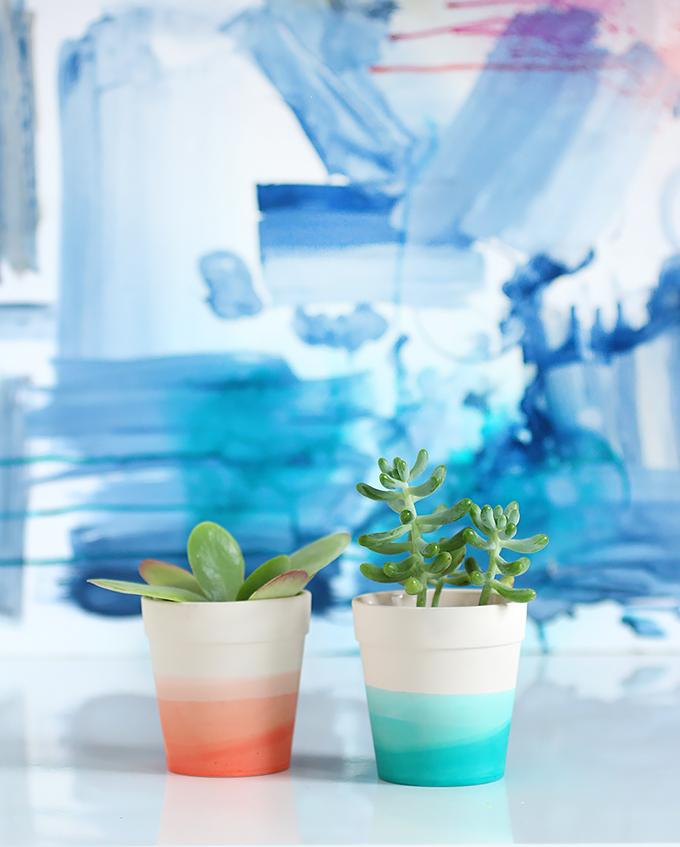 dip dye plant pots