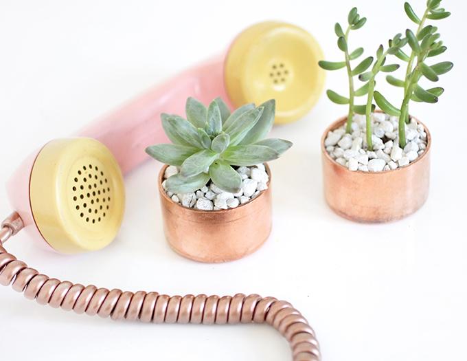MY DIY | Copper Cap Succulent Holder