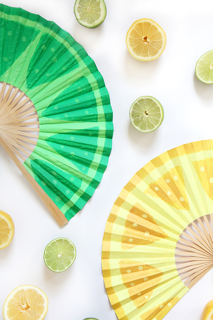 ispydiy_cincodemayo_fan1