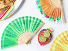 ispydiy_cincodemayo_fan_slider