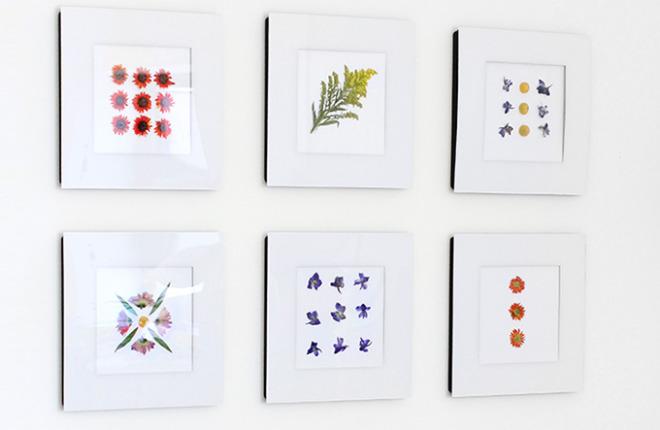 MY DIY | Quick Dried Flower Art