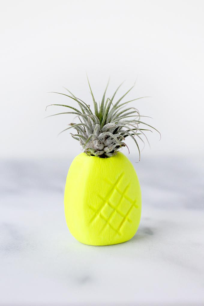 ispydiy_pineappleairplantholder2
