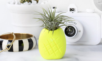 MY DIY | Neon Pineapple Airplant Holder