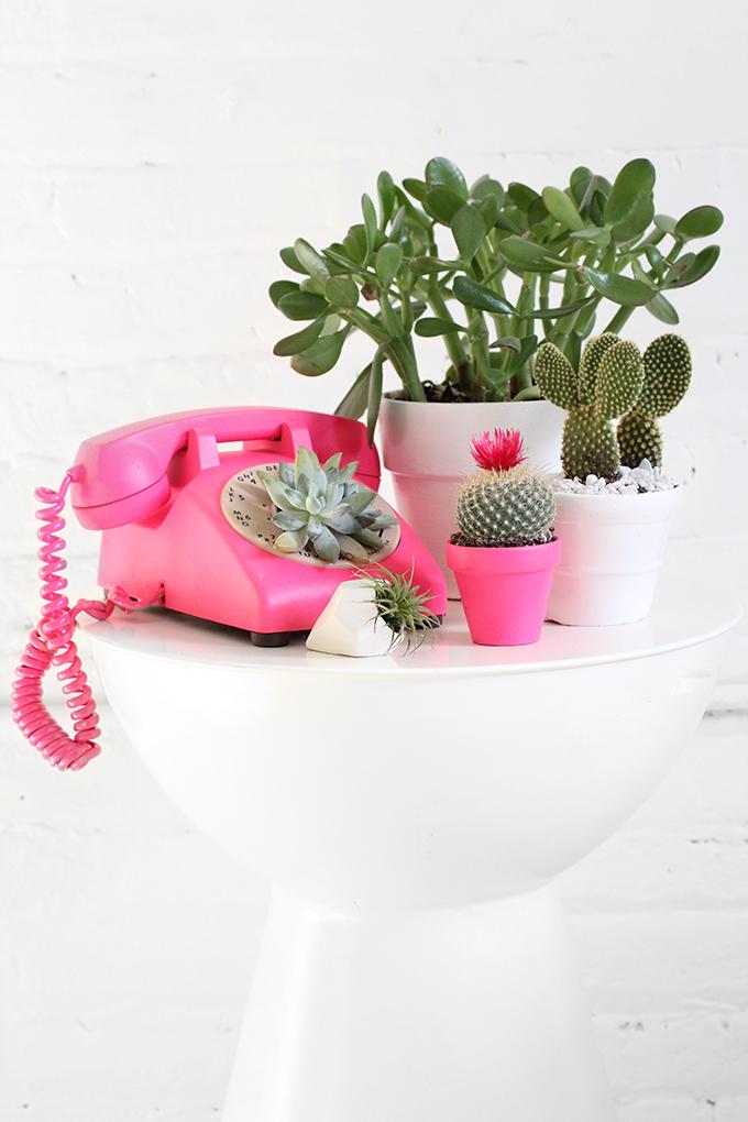 ispydiy_plantscare5