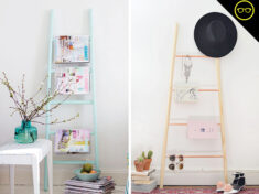 Ispydiy_ladder_slidder