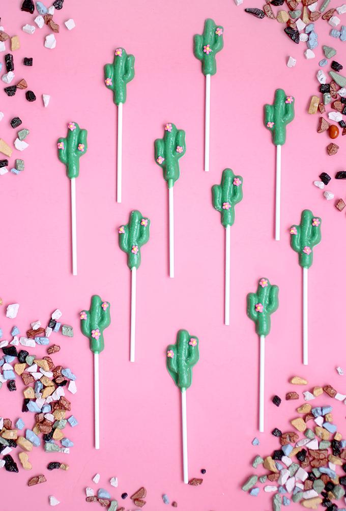 ispydiy_Chocolate_cactus1