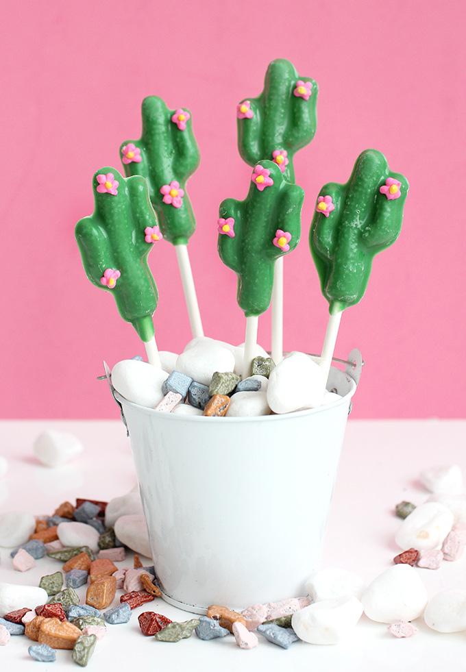 ispydiy_Chocolate_cactus11