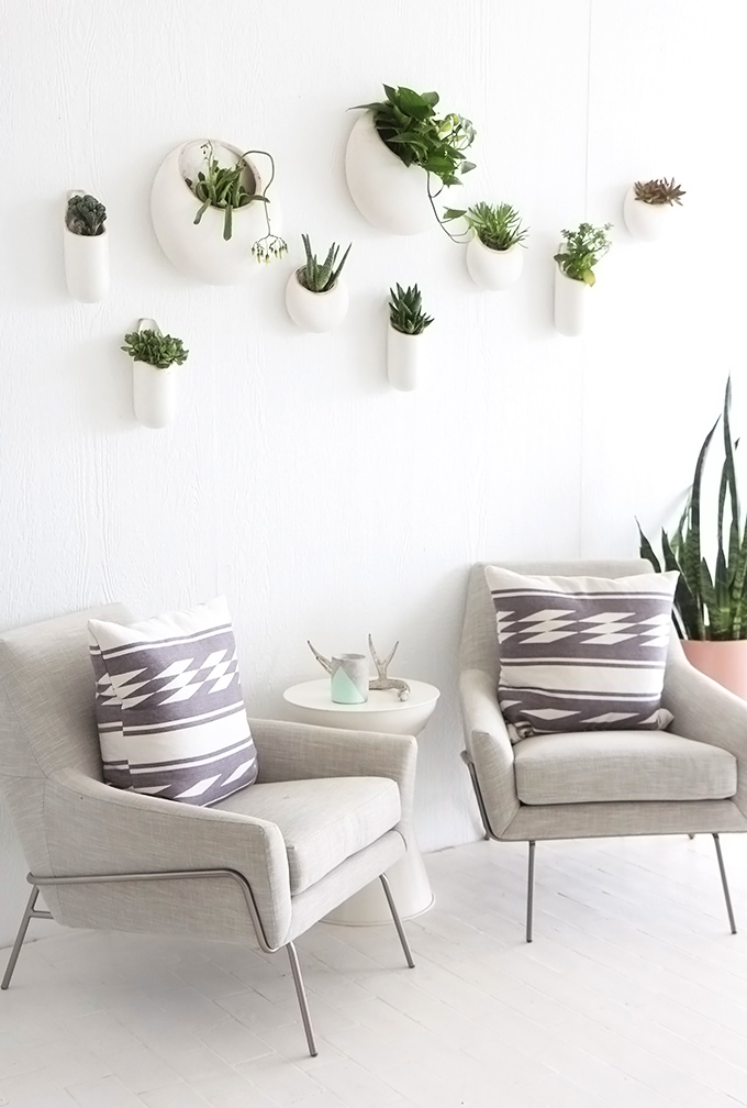 ispydiy_wallplants3