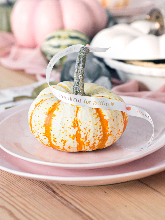 ispydiy_thanksgiving13
