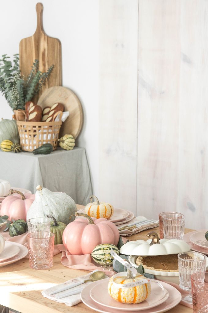 ispydiy_thanksgiving5