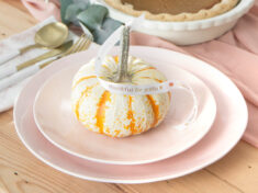 ispydiy_thanksgiving_slider