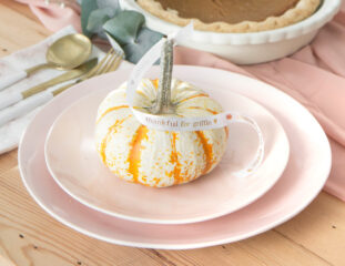 ispydiy_thanksgiving_slider