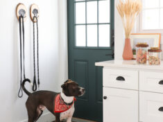 ISPYDIY_RachaelRay_Dogleash_treats2
