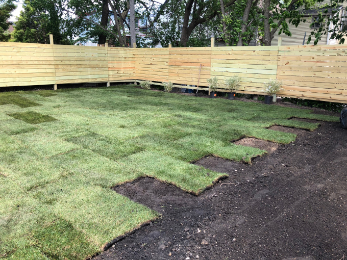 ispydiy_backyard_sod16