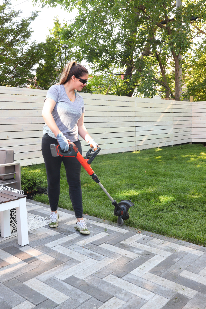 ispydiy_backyard_sod4